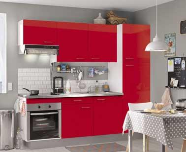 Petite cuisine ouverte bien quip e design en rouge et gris for Decoration d une petite cuisine