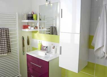 Ambiance pepsy et colorée avec cet ensemble de salle de bain haut en couleurs ! Astucieuse et gaie, cette déco privilégie les rangements muraux au maximum et la luminosité.Meuble de salle de bains couleurs aubergine Castorama.