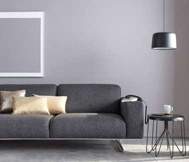 salon moderne en gris perle pour sa couleur peinture. Black Bedroom Furniture Sets. Home Design Ideas
