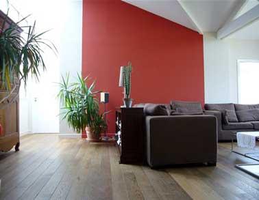 Une peinture de salon design rouge vive donne du tonus aux murs de la pièce. Beau contraste avec le canapé d'angle en cuir chocolat et le parquet en bois brut
