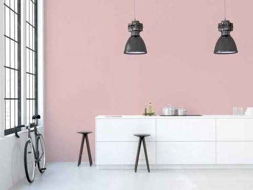 Peinture 1825 rose poudre dans cuisine ouverte design - Couleur peinture rose poudre ...