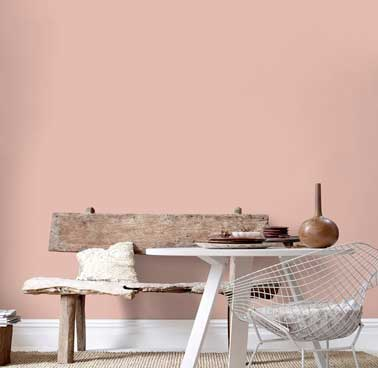 Peinture salon d co scandinave avec une couleur rose poudr - Couleurs chaudes en peinture ...