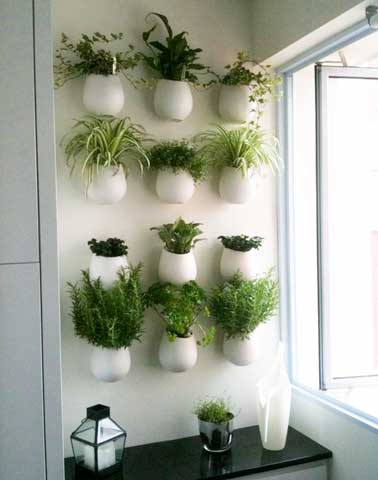 Mur v g tal et autre jardin vertical ext rieur et int rieur for Pot de decoration interieur