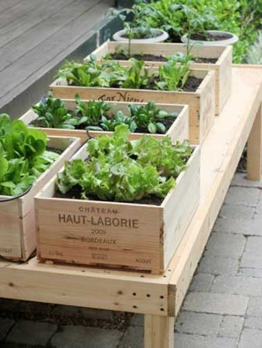 Des caisses à vin transformées en jardinière pour cultiver salades et herbes aromatiques dans le jardin. Ce jardin potager se place sur un châssis bois bien exposé sur la terrasse.