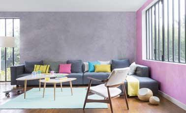 Salon rose et gris en deux couleurs de peinture nacr e for Couleur du salon sejour