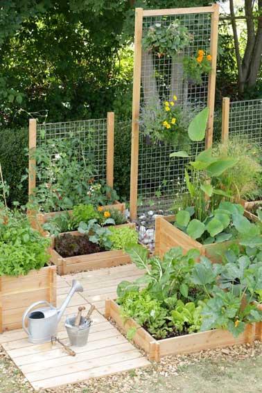 Faire un potager en carr de jardin ou suspendu avec 3 fois rien for Bordure bois pour jardin potager