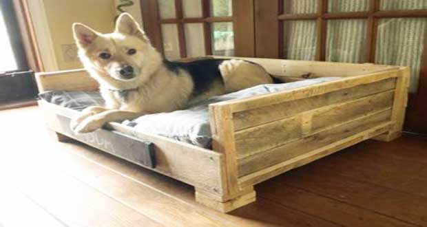 diy de lit pour chien en palette bois. Black Bedroom Furniture Sets. Home Design Ideas