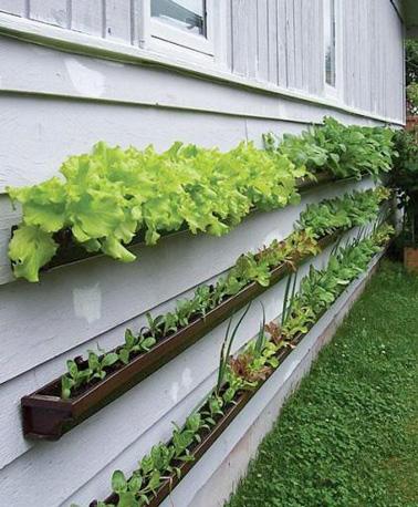 Un potager surélevé pour protéger judicieusement ses légumes des insectes et des animaux. Ultra facile à faire avec des gouttières PVC pour une déco unique du jardin