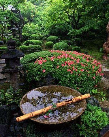 Un jardin zen ponctu d arbustes en fleur d azal e for Arbuste jardin japonais