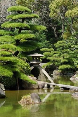 ce jardin zen traditionnel se met l ombre des pins. Black Bedroom Furniture Sets. Home Design Ideas