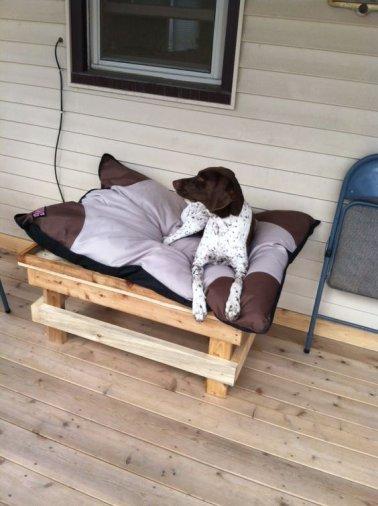 Pour réaliser ce projet de lit pour chien, démonter vos palettes à l'aide d'un arrache clous. Prendre quatre traverses de la bonne longueur dans une palette , quatre autres pour la largeur et quatre pieds.