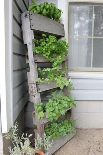 Un mur v g tal en jardini res tages - Mur vegetal palette ...