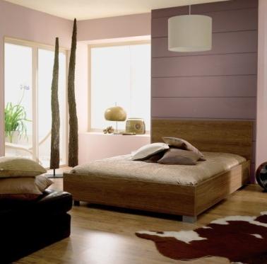 Cette peinture de chambre est sobre mais égayée par une avancée qui fait office de maxi tête de lit. La couleur se marie avec élégance aux détails déco de la pièce: tapis vache, lit en bois massif, …