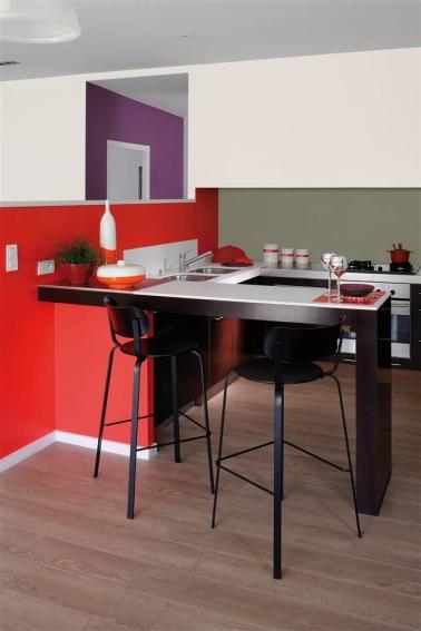 Une peinture rouge dans la cuisine coexiste bien avec du blanc, du violet et des meubles noirs pour une déco haute en couleur. De quoi rehausser un petit studio !