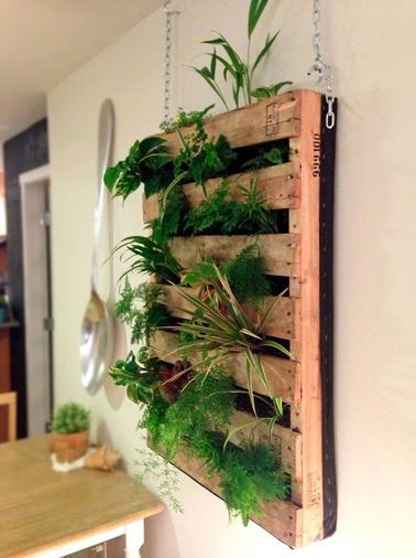 Faire un mur v g tal en palette sur son balcon for Plante decorative exterieure