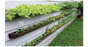 Pour ceux qui n'ont pas un grand jardin, ceux qui veulent un potager sur le balcon, voici un potager surélevé qui va vous plaire pour salades, radis, tomates....