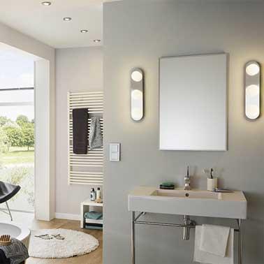 Conseils d co pour optimiser une petite salle de bain for Petites betes dans la salle de bain