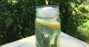 Pour vous protéger des piqures de moustiques pendant les soirées d'été dans le jardin ou sur le balcon, optez pour un anti moustique naturel fait maison avec entres autres composants du romarin du citron et des huiles essentielles
