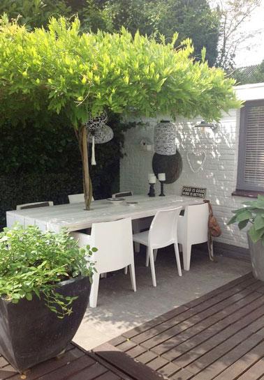 Voilà une déco extérieure qui ne manque pas d'originalité sur la terrasse ! Pour se protéger du soleil et obtenir un espace intime, un grand arbre prend place sur la table et remplace le parasol