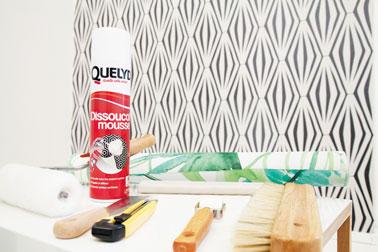 Un nouveau spray qui vous changera la vie pour refaire la déco des murs en toute simplicité et décoller le papier peint facilement ! Dissoucol mousse – QUELYD 9,90€