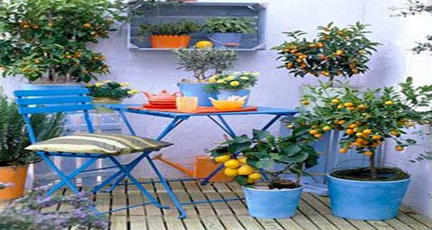 Pour les beaux jours, la couleur s'invite dans la déco du balcon pour notre plus grand bonheur ! Une déco fraiche et estivale sur le balcon pour une ambiance qui a du style