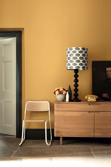 Une déco salon pleine de vitalité grâce à une peinture jaune moutarde ! Un salon qui ne manque pas d'originalité avec cette couleur vive très tendance et actuelle