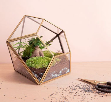 un terrarium d co sous une forme g om trique originale. Black Bedroom Furniture Sets. Home Design Ideas