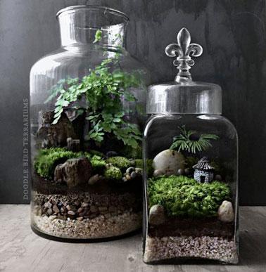 Plus qu'un mini jardin d'intérieur, le terrarium est un écosystème miniature dans un bocal en verre où on retrouve des plantes , des cailloux, de la terre pour un élément déco original.