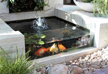 Pour faire le bonheur des petits et des grands, voilà un bassin moderne permettant de regarder les poissons grâce à sa vitre ! Un aménagement de jardin design et coquet