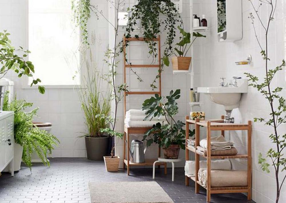 des plantes vertes pour une salle de bains tendance. Black Bedroom Furniture Sets. Home Design Ideas