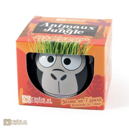 Kit à faire pousser pour une première expérience de jardinier
