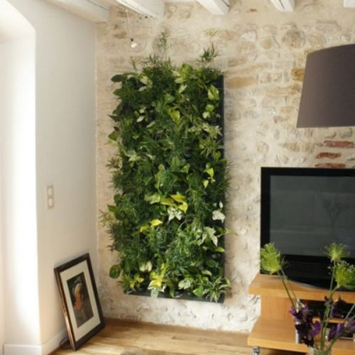 kit de mur végétal