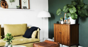 ambiance salon green