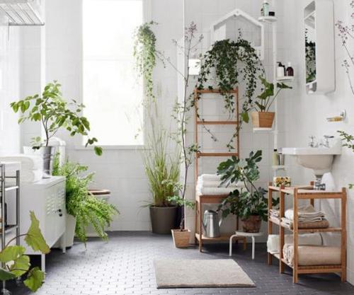 des plantes pour une touche de verdure jusque dans la salle de bains